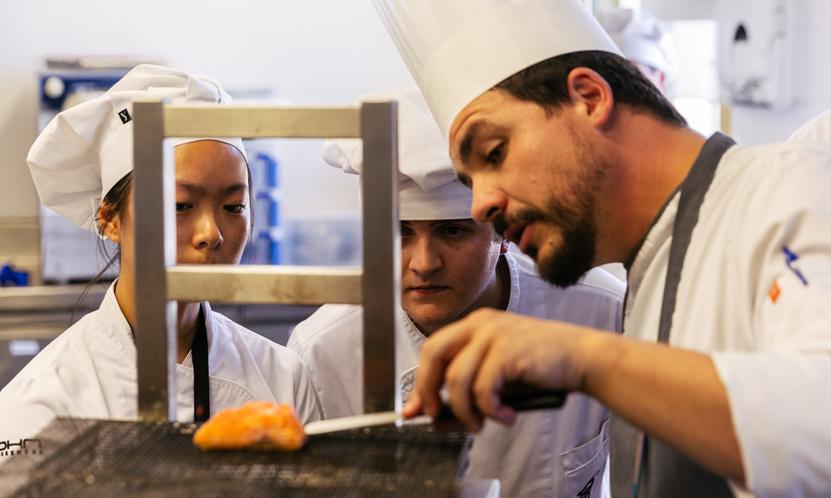 profesores de grado en gastronomia
